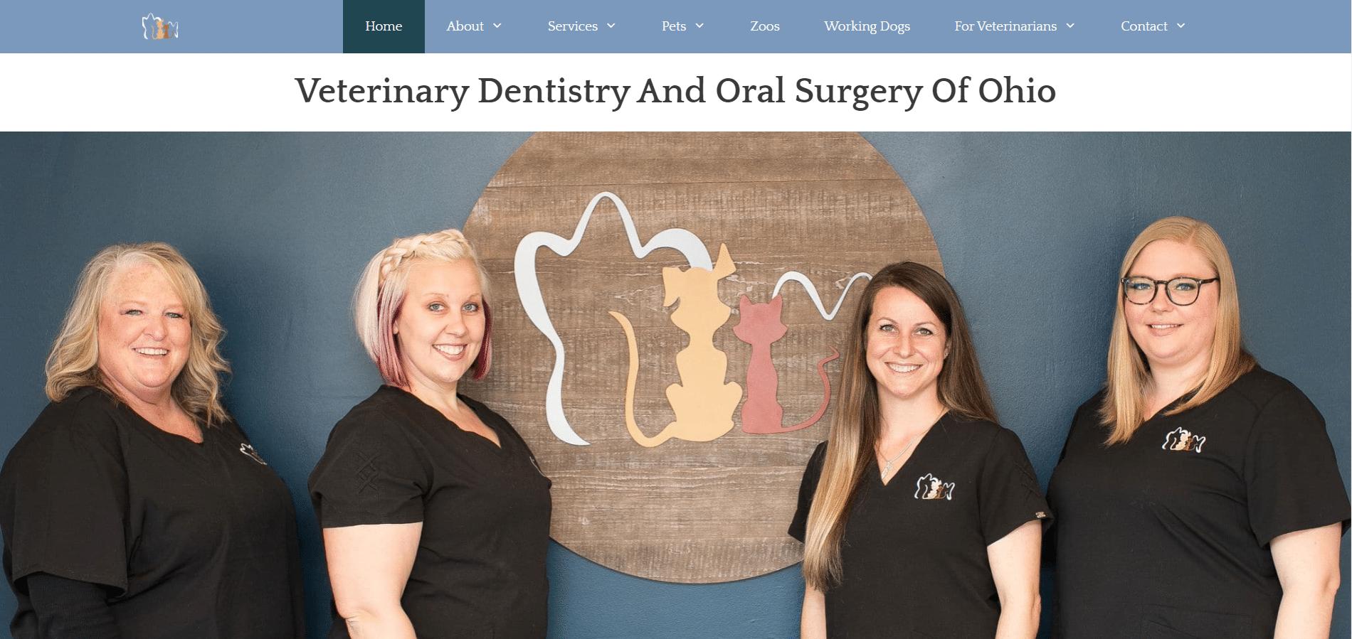 Vet Dentist